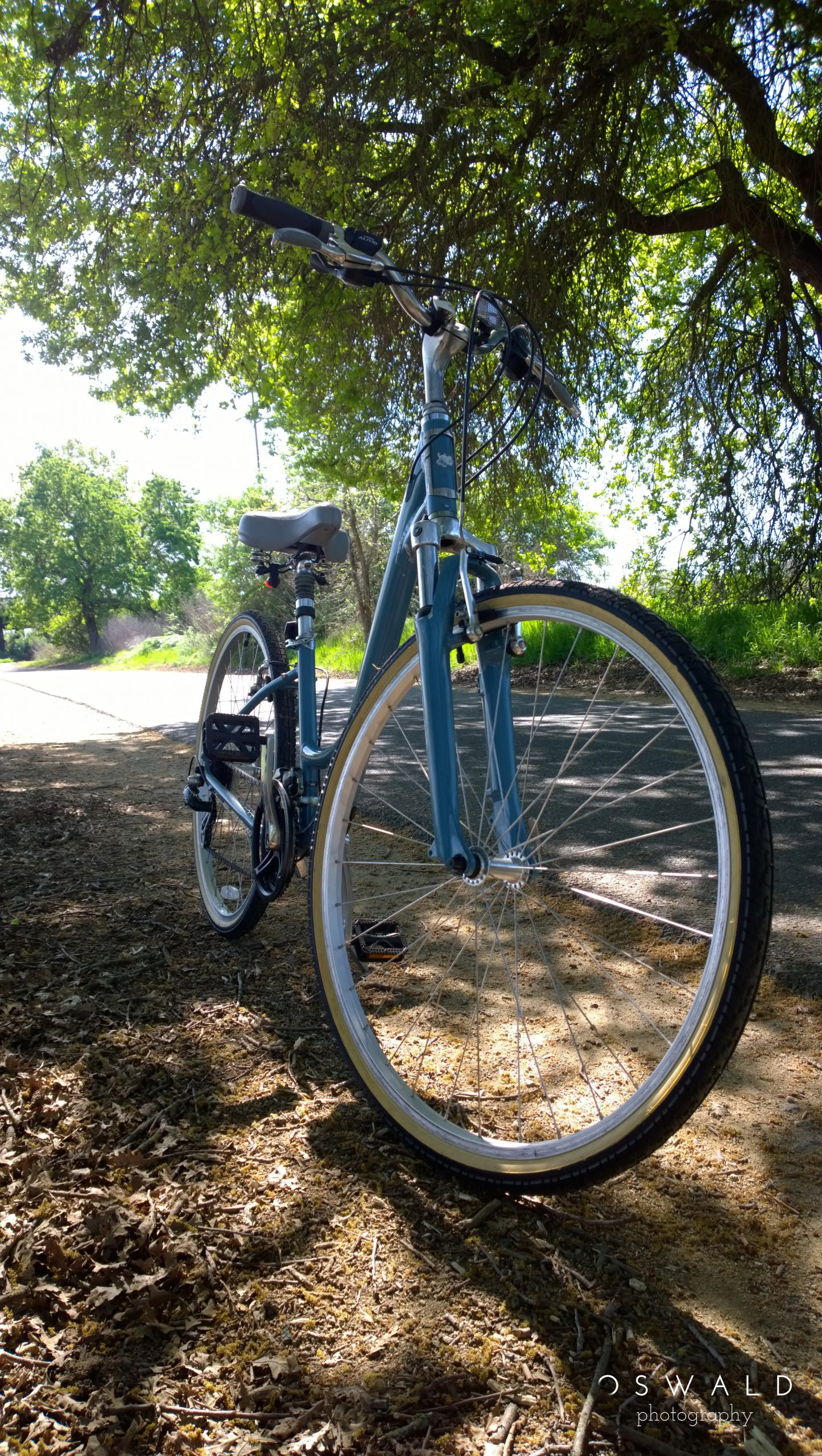 Close up, wide angle photography of a hybrid women's bicycle near a forrested bike trail.