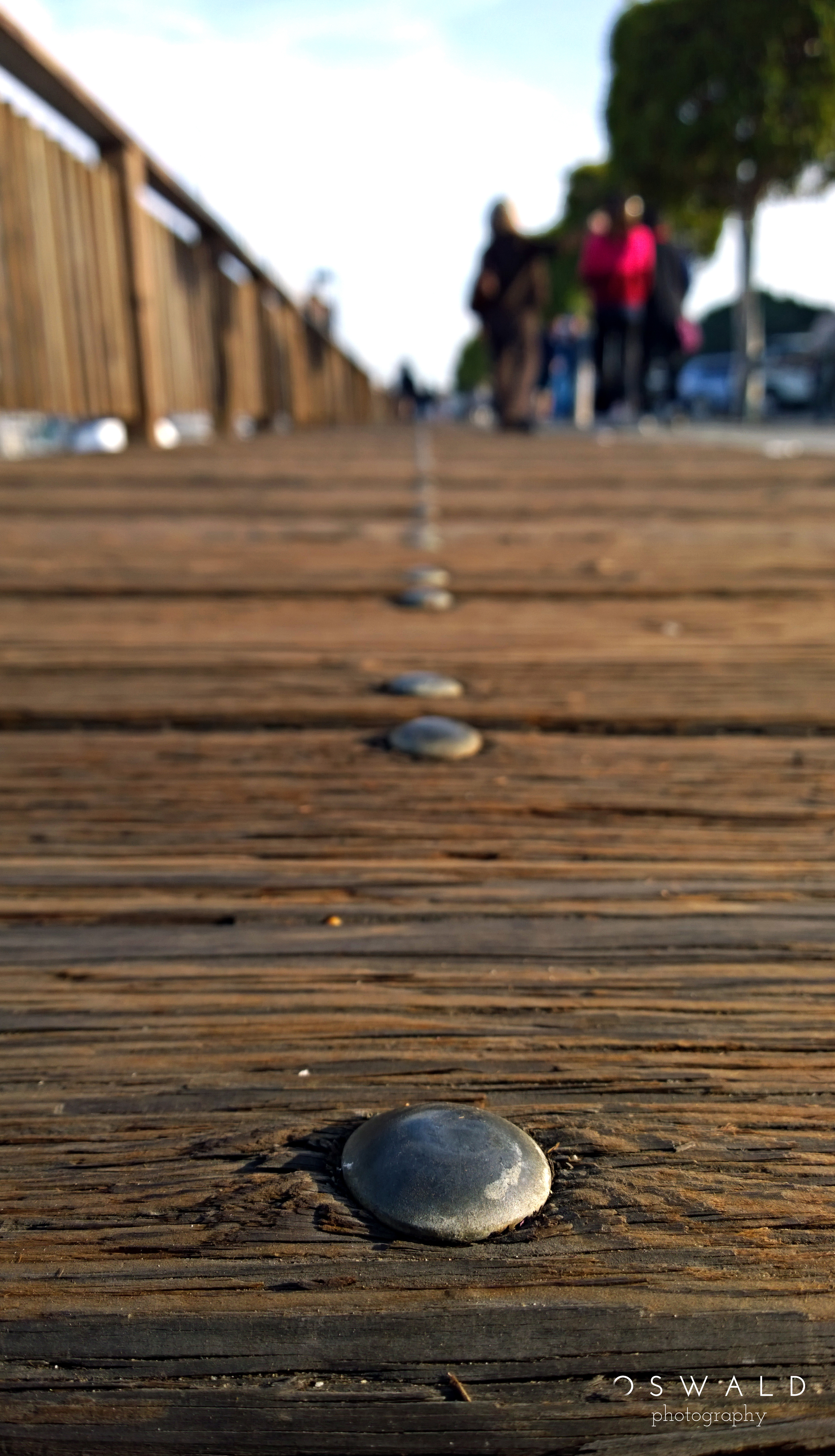 Low-level texture shot of the Sausalito Pier, near San Francisco, California in the afternoon sun.