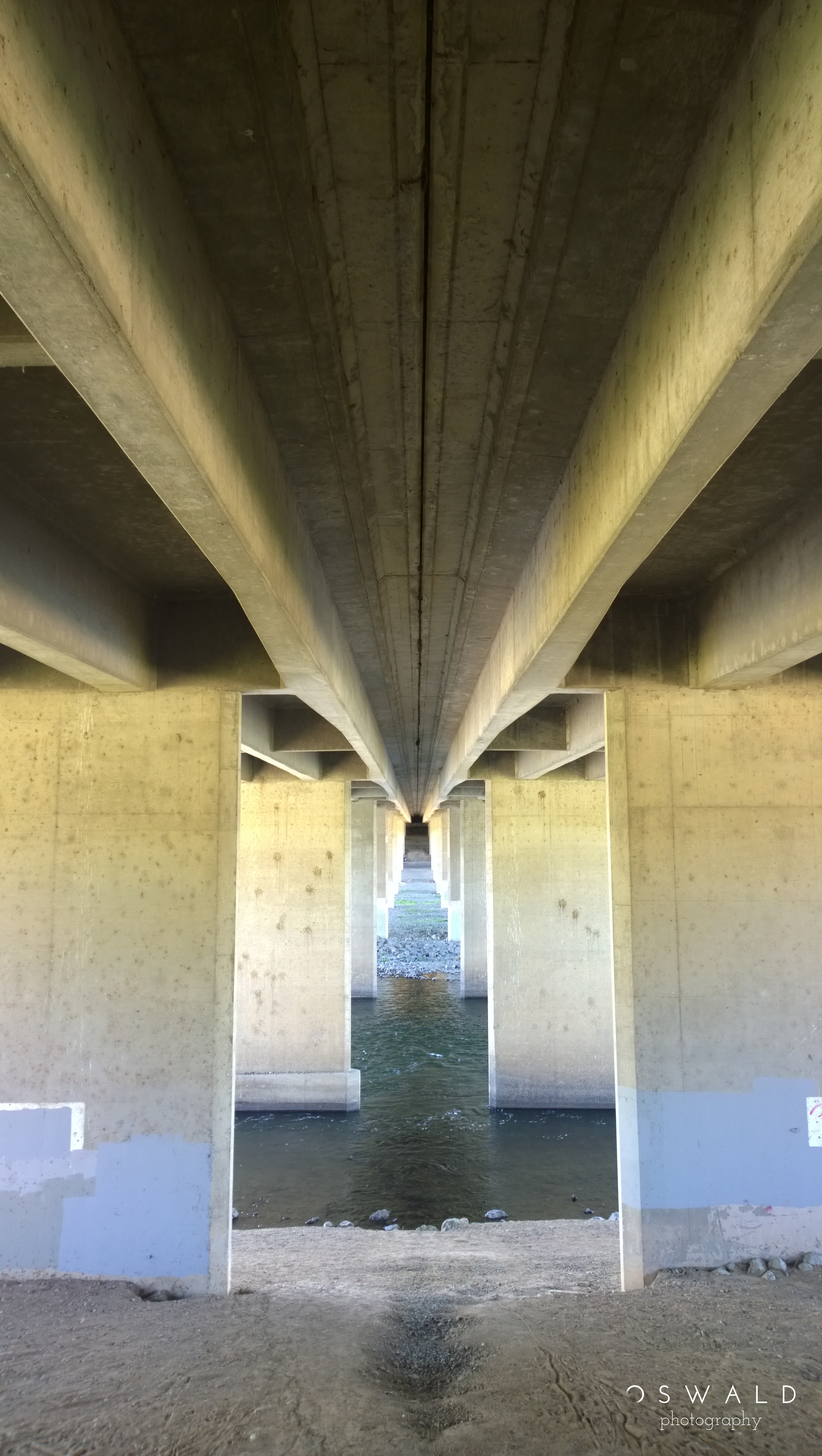 Photograph of the landscape beneath Howe Avenue Bridge