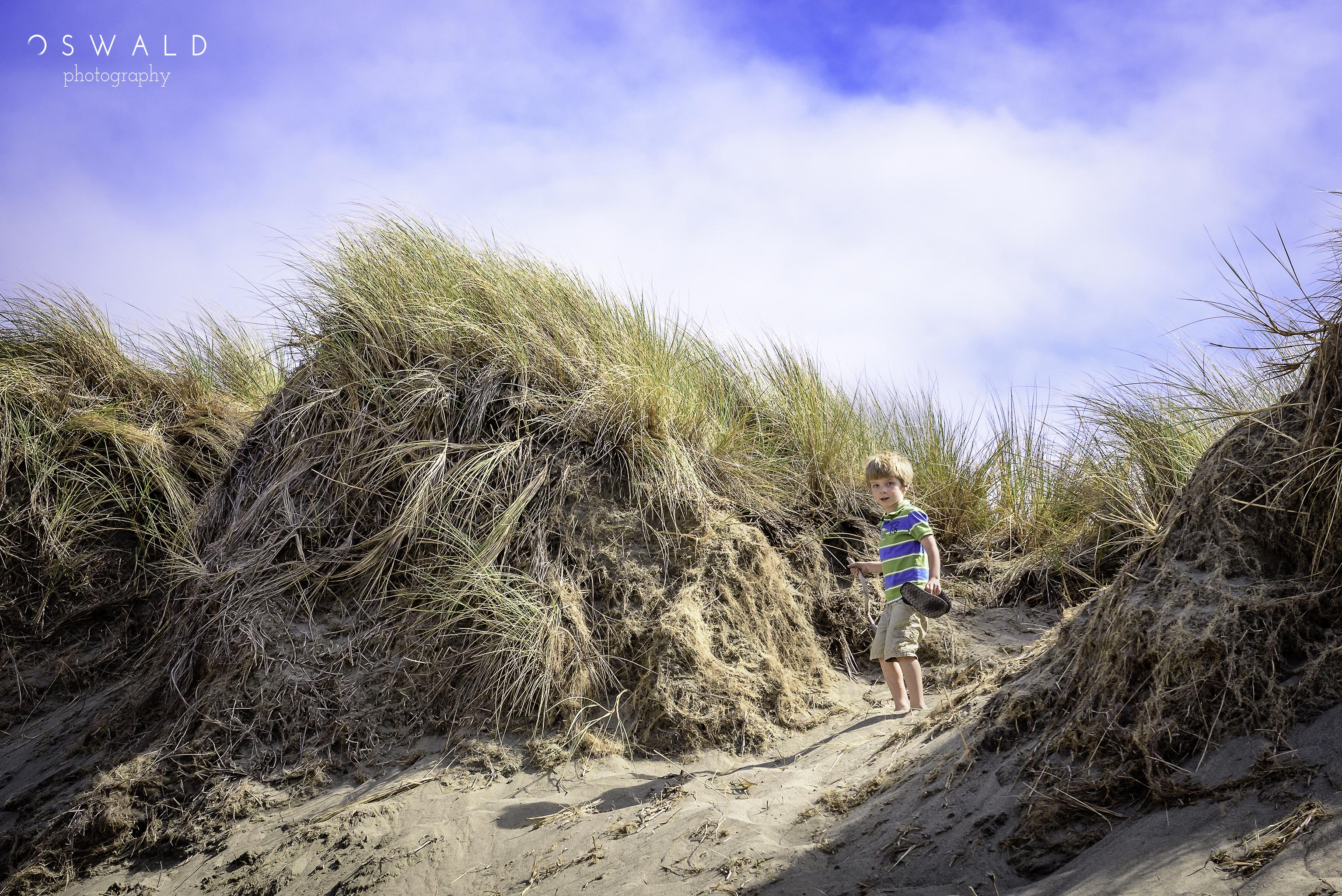 A young boy crosses over the tall grasses of coastal sand dunes at Bodega Bay in Northern California.