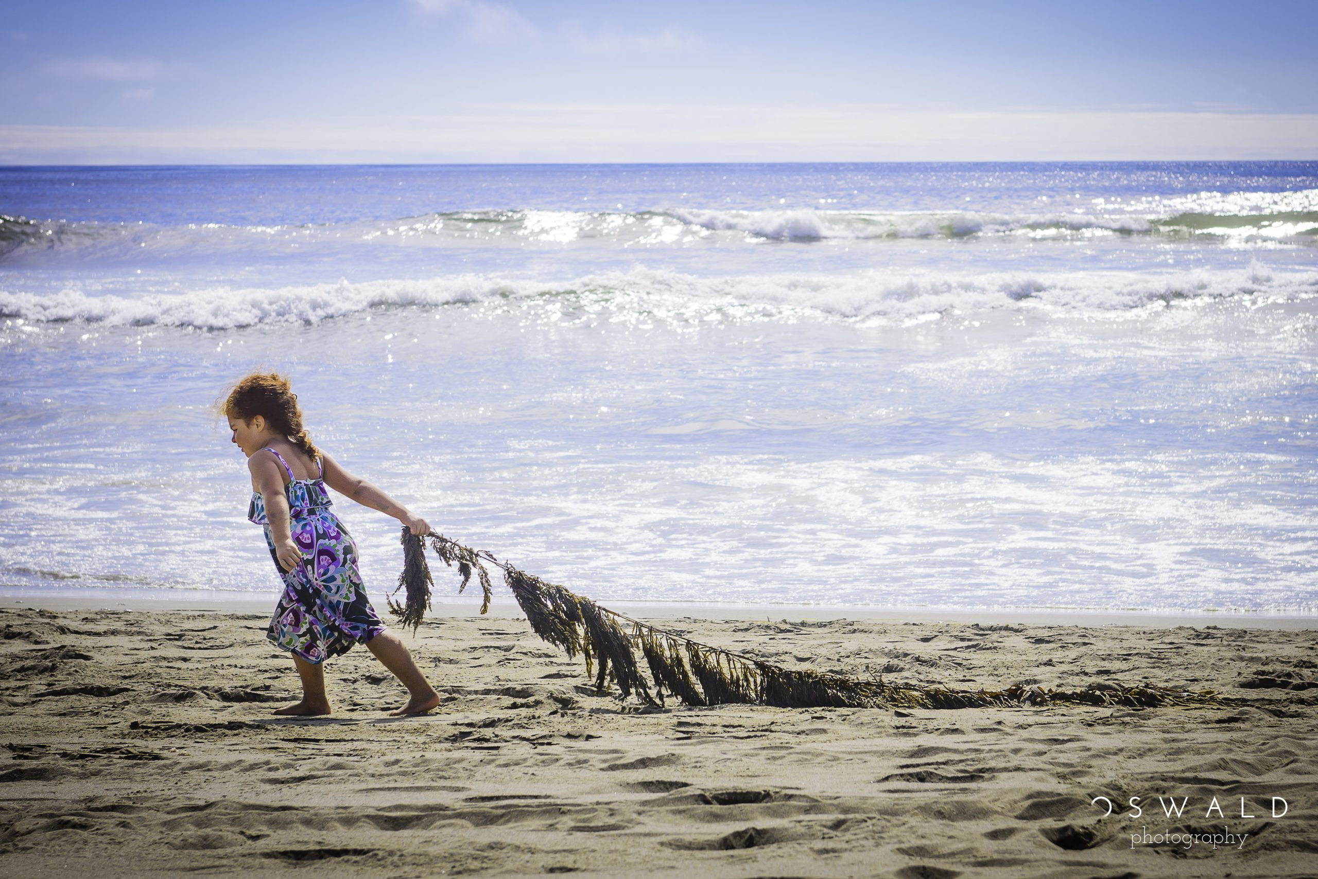 A young red-headed girl walks down a sandy beach pulling a large piece of seaweed behind her.