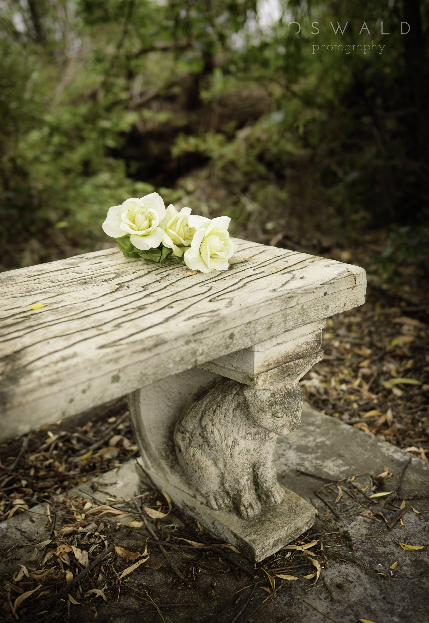 Close up photograph of a bench in a quiet corner of a graveyard in Windsor, California, with silk flowers left behind.