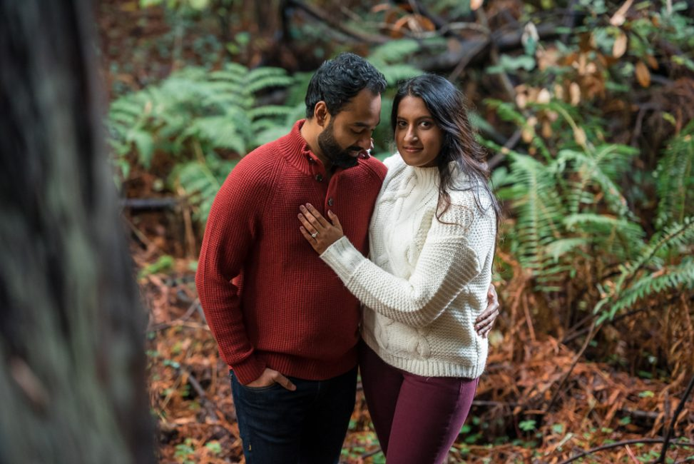 Indian couple standing in Muir Woods National Monument