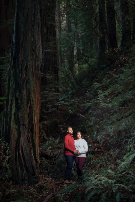 An Indian engaged couple stands in teh darkness of a redwood forest.