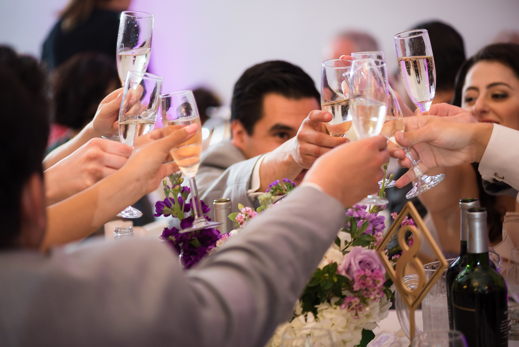 Photo of a bridal party toasting the newlyweds.