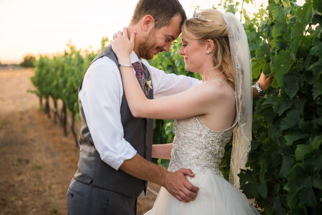 A bride and groom canoodle in a vineyard in San Martin, CA.