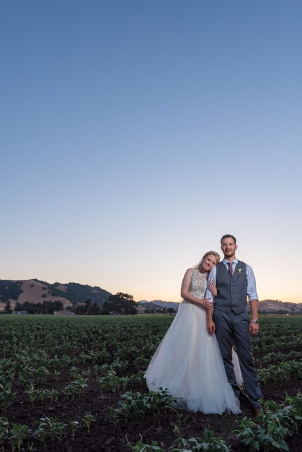 A bride and groom lean against each other in a strawberry field in San Martin, CA at sunset.