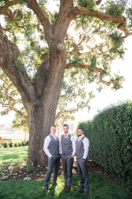 Groom and groomsmen pose for formal portraits under a tree at San Martin's Fitz Place wedding venue.