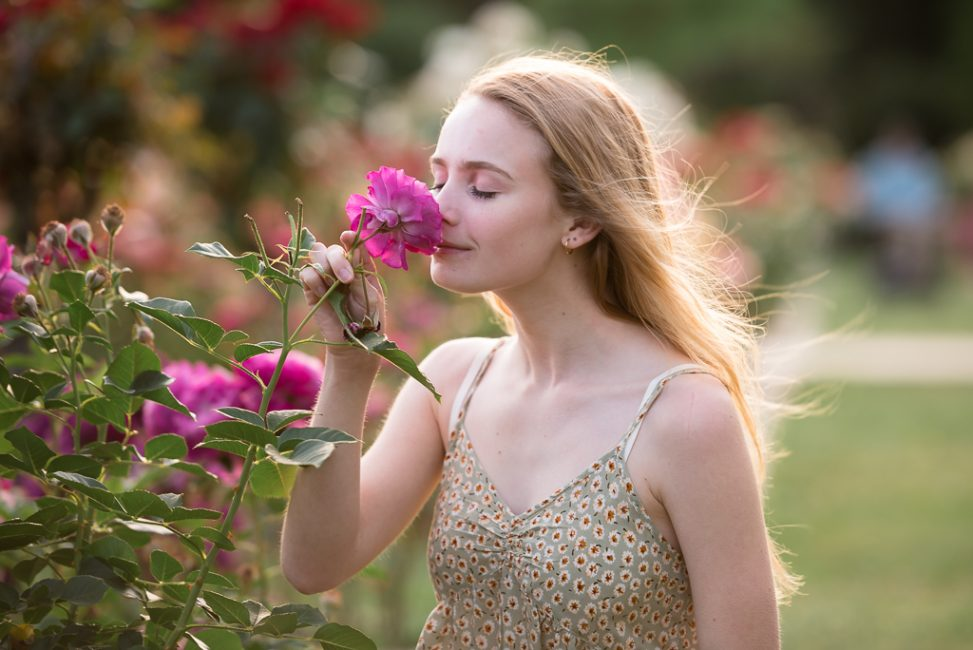A high school senior smells a rose in a local Sacramento rose garden.