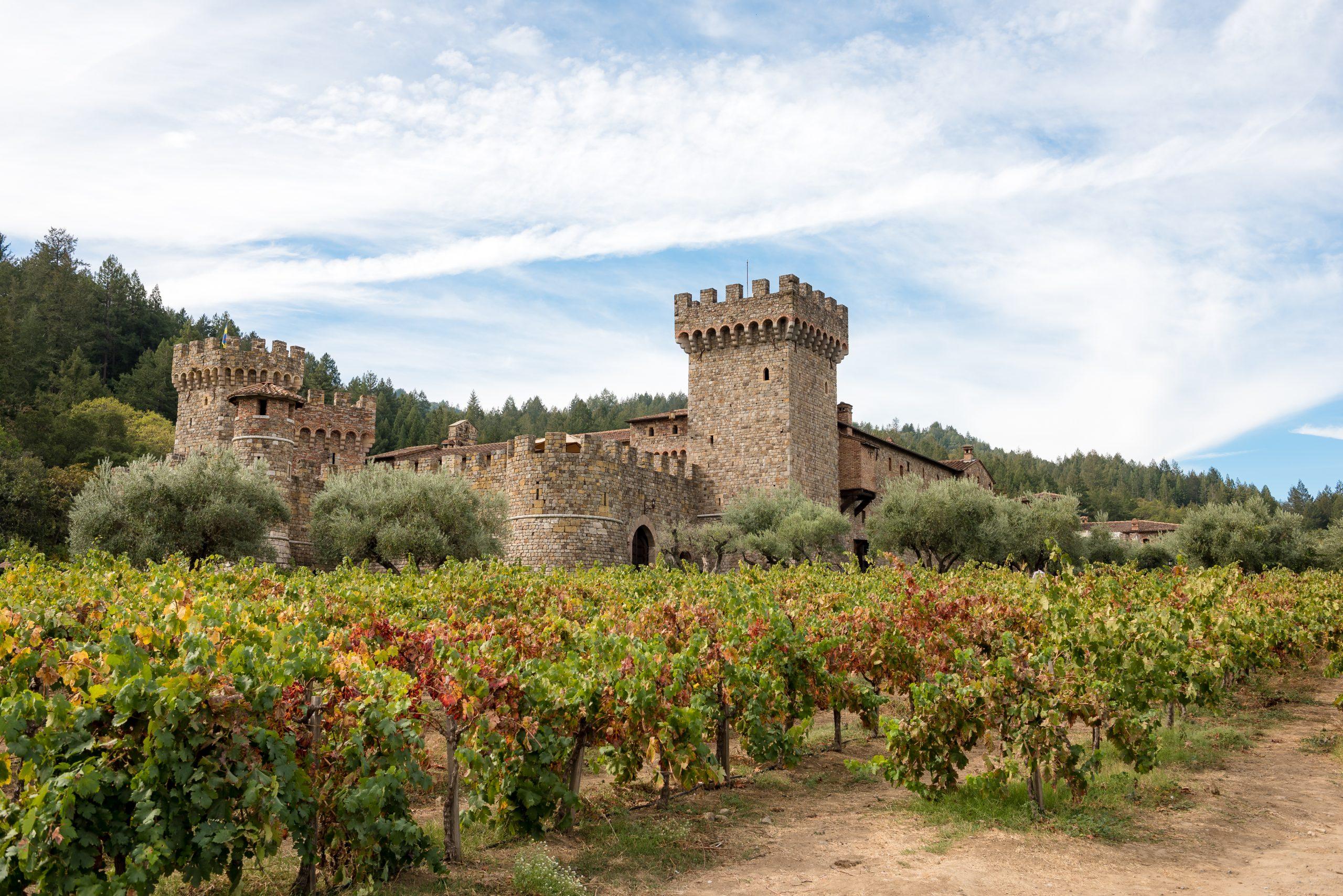Surprise marriage proposal at Castello Di Amorosa in Callistoga, CA