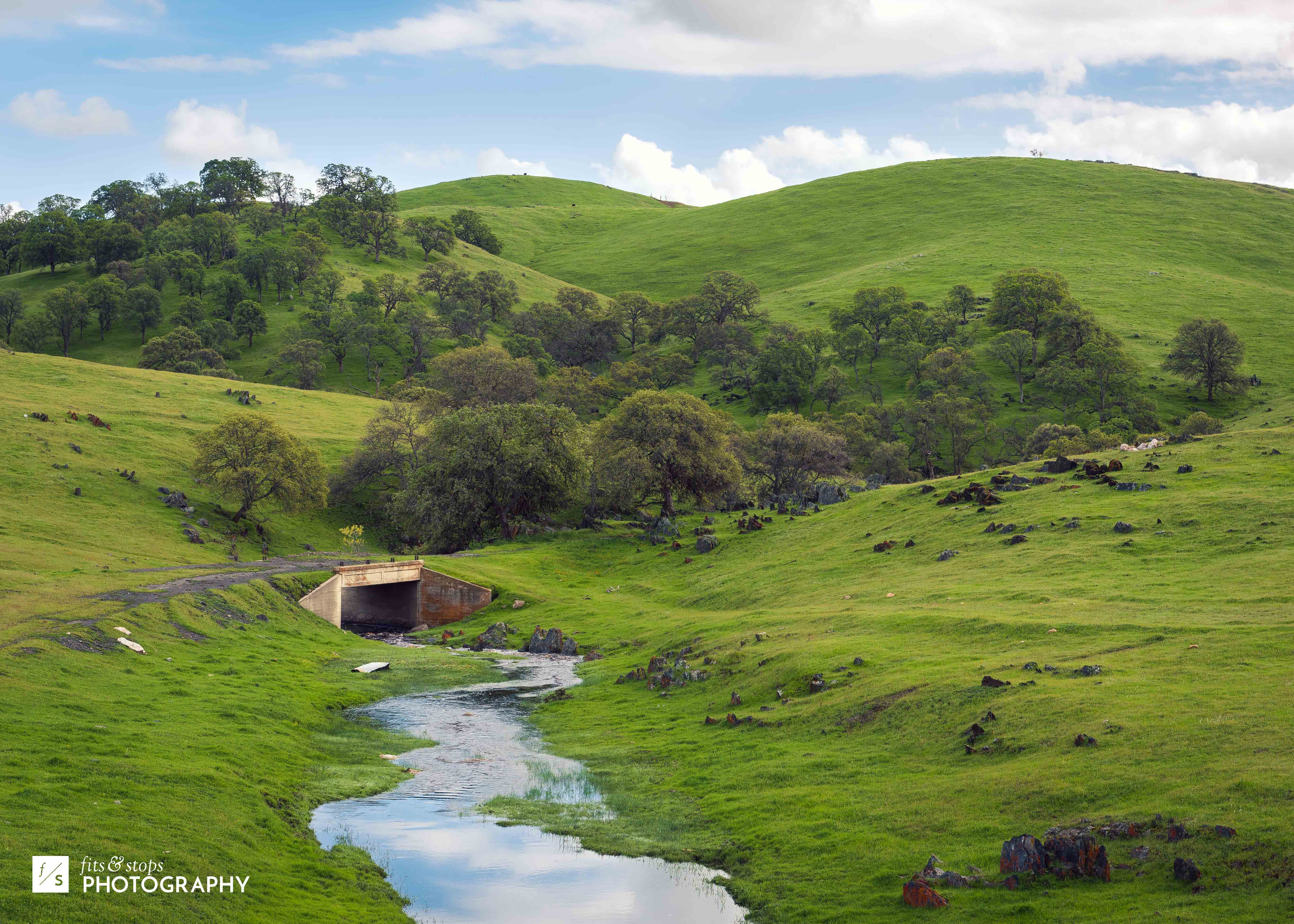 A landscape photograph of the lush pastures east of Merced, California, renewed by a recent downpour of rain. A swollen creek runs underneath an old stone bridge.
